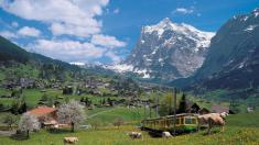 Grindelwald against the backdrop of the Wetterhorn